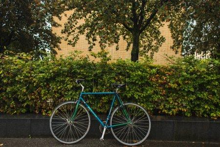 Photo pour Vélo bleu près des buissons verts et des arbres dans la rue urbaine - image libre de droit