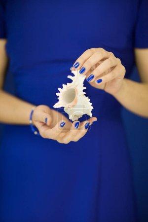 Photo pour Belles mains de femme avec vernis à ongles bleu parfait tenant peu coquille d'escargot de mer devant la robe bleue, peut être utilisé comme fond - image libre de droit