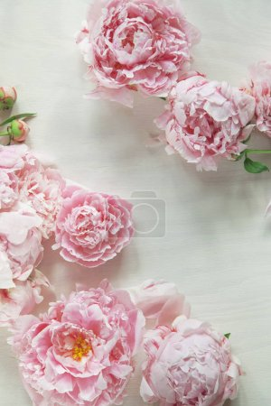 Flat lay concept with beautiful peonies on white wood, can be used as background