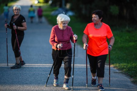 Elderly woman is engaged in Nordic walking with her adult daughter.