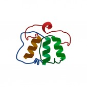 Recombinant protein DNA colorful