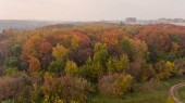Aerial view of the colorful autumn city park. Beautiful view of nature.