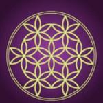 Seed of life symbol...