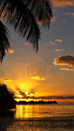Photo for In polynesia bora bora  the sunset in the  coastline and resort like paradise concept and rela - Royalty Free Image