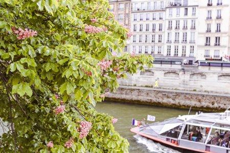 Photo pour Architecture en France. Les rues du vieux centre de Paris. Voyages et tourisme. remblai de rivière - image libre de droit