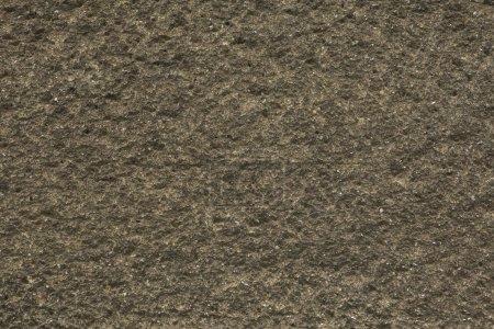 Rough unpainted concrete wall. Background texture.