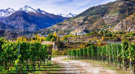 Photo pour Châteaux et vignobles du Val d'Aoste avec montagnes Alpes. - image libre de droit