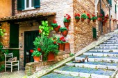 Charming flora decorated streets of old Italian villages. Casperia,Rieti province.