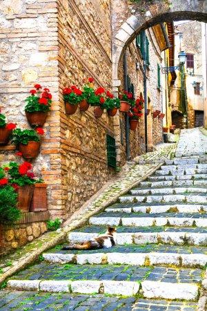 Photo pour Villages médiévaux traditionnels d'Italie - pittoresque vieille rue Casperia village, Rieti, Italie . - image libre de droit