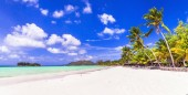 Perfect tropical holidays - white sandy beaches of Seychelles. Praslin.