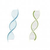 DNA vector icon illustration design