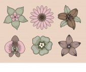 Vintage flowers on pink background orchid chamomile lily crocus and others