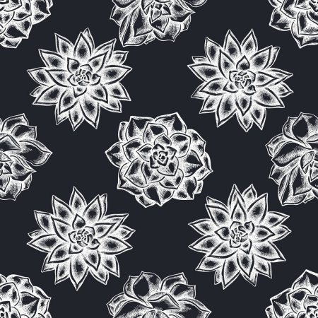 Photo for Seamless pattern with hand drawn chalk succulent echeveria, succulent echeveria, succulent stock illustration - Royalty Free Image