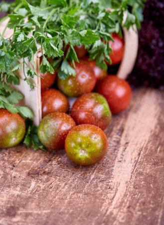 Photo pour Le persil est sur le panier avec des tomates. Des gouttes d'eau sur des tomates juteuses. Sur un fond en bois - image libre de droit