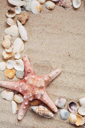 Photo for Beach and Summer background - Close up of starfish and seashells on sand background - Royalty Free Image
