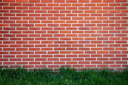 full frame of brick wall and green lawn background