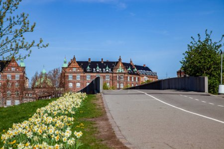 empty road and bridge, beautiful blooming daffodils and historical architecture in copenhagen, denmark