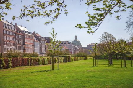 Photo for Beautiful green lawn with trees and bushes and cozy street with historical buildings in copenhagen, denmark - Royalty Free Image