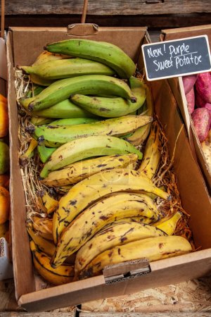 bananas in cardboard box on market place with signboard near