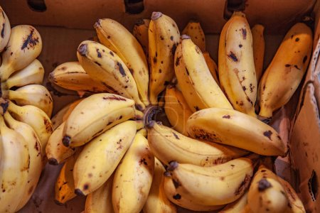 Photo for Close up image of mini bananas in cardboard box - Royalty Free Image