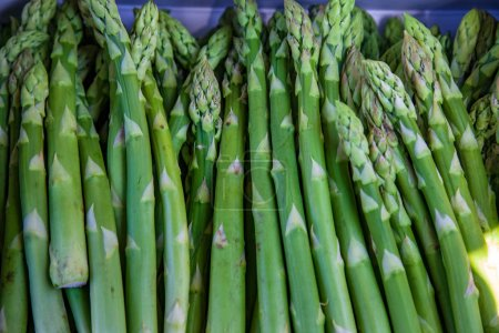 Photo for Close up view of pile of asparagus on blurred background - Royalty Free Image