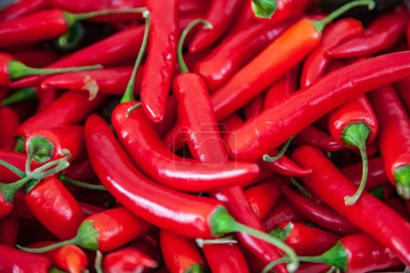 Photo for Full frame image of pile of red chilli peppers - Royalty Free Image