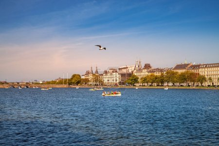 COPENHAGEN, DENMARK - MAY 6, 2018: scenic view of cityscape and seagull flying over river with boats