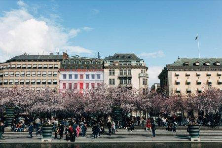 Foto de Suecia, Estocolmo - abr 27, 2018: escena urbana con florecientes árboles, edificios y ciudadanos, Estocolmo, Suecia - Imagen libre de derechos