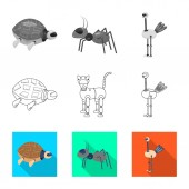 Vector design of toy and science icon Collection of toy and toy stock symbol for web