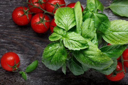 Photo pour Vegetables on the black background. Organic foods and fresh vegetables. Fresh tomatoes and basil herb on old wooden table. Top view - image libre de droit