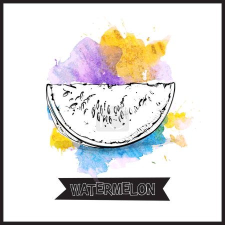 Illustration for Hand draw of watermelon. Vector illustration. - Royalty Free Image