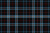 University Tartan Seamless pattern for fabric kilts skirts