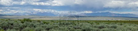 Panoramic view of Green wild land with sagebrush p...