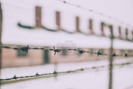 Closeup of barbed wire fence near the famous arch of the concentration camp Auschwitz.