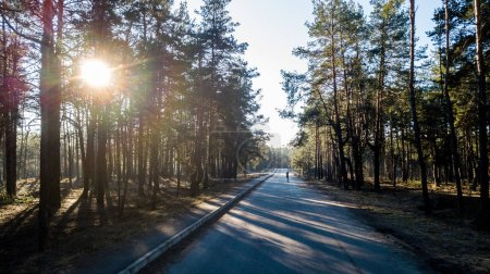 young woman riding skateboard on forest road with sun shining between trees, Kyiv, Ukraine