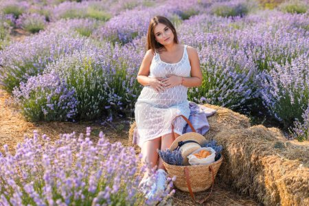 pregnant woman sitting on hay bale in violet lavender field and looking at camera