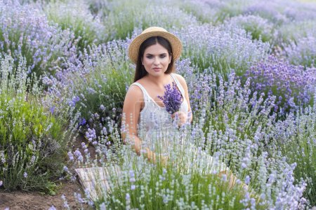 Photo for Beautiful woman in white dress sitting in violet lavender field and holding small bouquet - Royalty Free Image