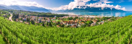 Photo pour Panoramic view of Montreux city with Swiss Alps, lake Geneva and vineyard on Lavaux region, Canton Vaud, Switzerland, Europe. - image libre de droit
