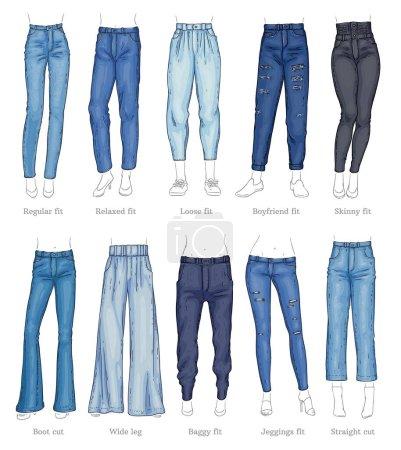Illustration pour Ensemble de modèles de jeans féminins et leurs noms style croquis, illustration vectorielle isolée sur fond blanc. Collection de pantalons ou types de pantalons en denim, vêtements de mode décontractés pour femmes - image libre de droit