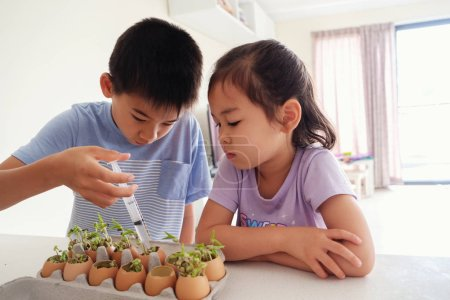 Mixed Asian children watering seedling plant in eggshells,, eco gardening,  montessori, education, reuse concept