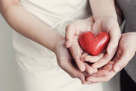 female and male hands holding red heart, health insurance, donation concept