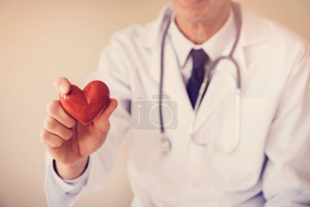 Doctor holding red heart, heart health concept