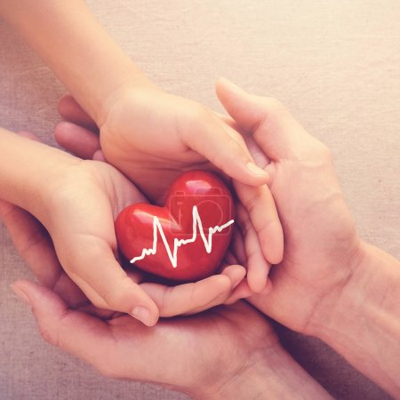 adult and child hands holiding red heart, health care, organ donation and family insurance concept