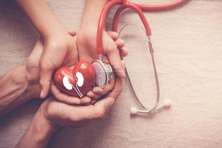 Photo pour Mains vinifie rouge coeur avec le rein, la journée mondiale de - image libre de droit