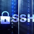 SSH, Secure Shell protocol and software. Data prot...