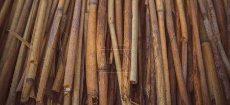 Texture des tiges de bambou. Un arrière-plan avec espace de copie .