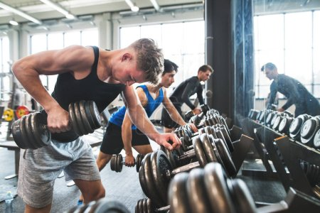 Photo for Young fit men doing strength training, exercising with dumbbells in modern gym. - Royalty Free Image