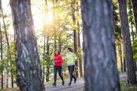 Photo for Two active female runners jogging outdoors in forest in autumn nature. - Royalty Free Image