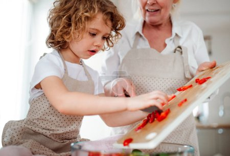 Photo for A portrait of small girl with grandmother in a kitchen at home, preparing vegetable salad. - Royalty Free Image