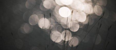 Foto de Shine water bokeh background - Imagen libre de derechos